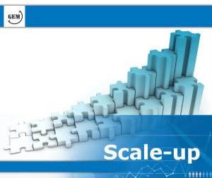 GEM_Frame_Scale-up